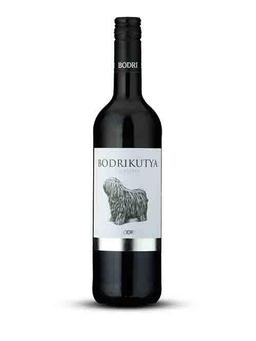 BODRI Bodrikutya RED - 2019